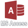 Microsoft Access Application Development